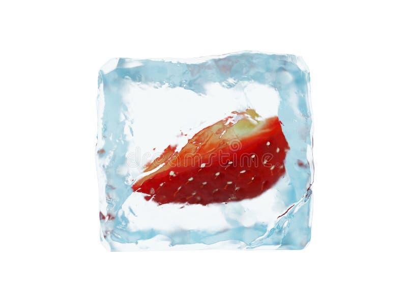 Baya congelada en cubo de hielo Fresa stock de ilustración