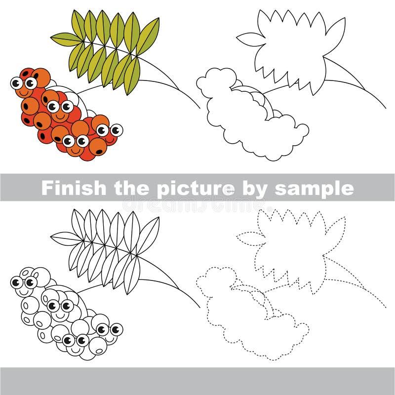 Baya de la ceniza roja Hoja de trabajo del dibujo stock de ilustración