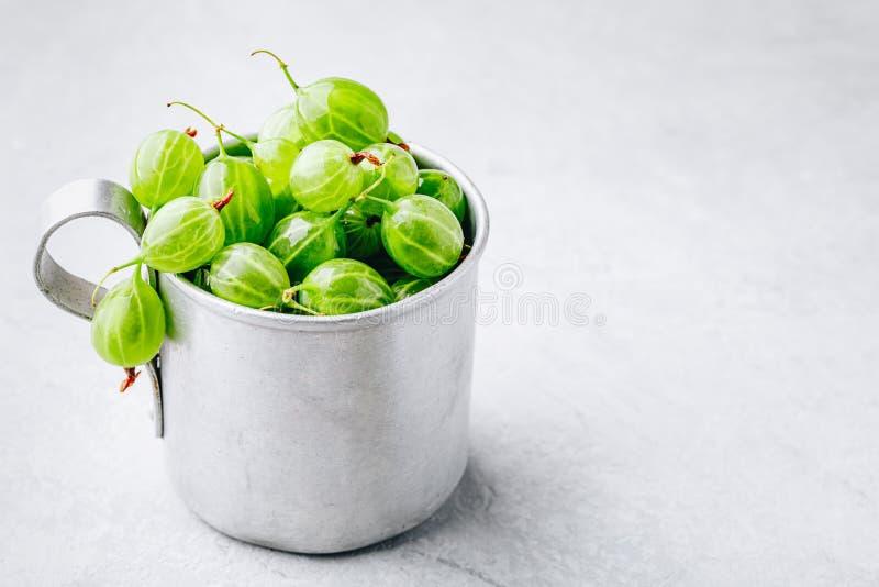 Baya orgánica fresca madura de la grosella espinosa en una taza imagen de archivo libre de regalías