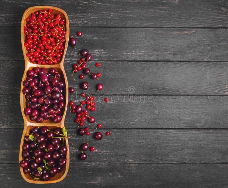 Baya roja fresca del jardín imagenes de archivo