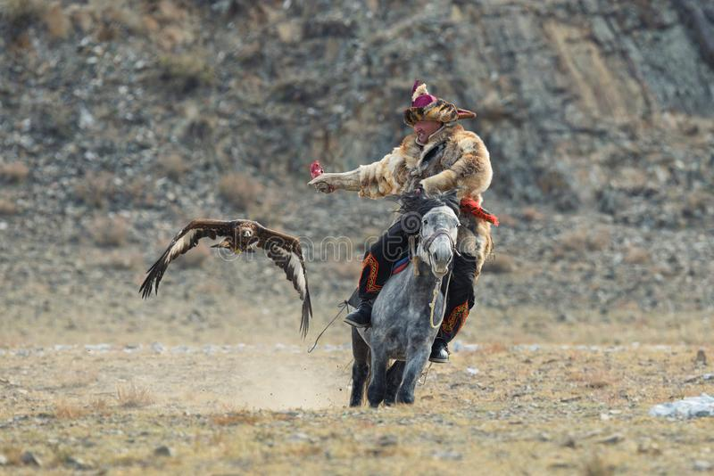 Bayan-Ulgii, Mongolië - Oktober 01, 2017: Traditioneel Gouden Eagle Festival Vliegend Gouden Eagle And Unknown Mongolian Hunter royalty-vrije stock fotografie