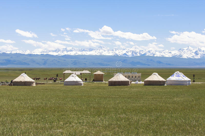 Bayanbulakweiden in Xinjiang stock foto