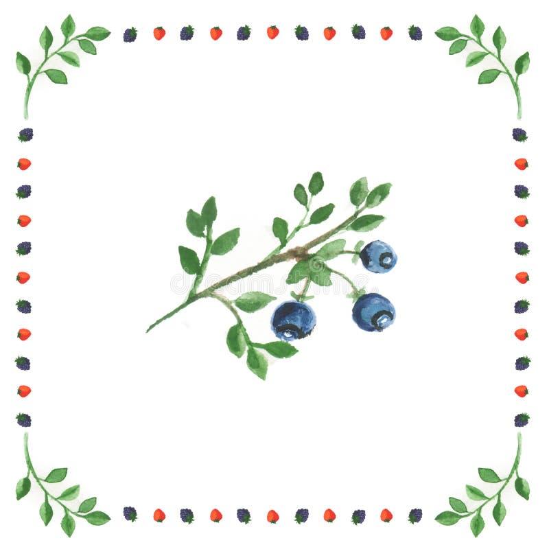 Bayas de la fresa salvaje en un fondo blanco enmarcado en baya imagenes de archivo