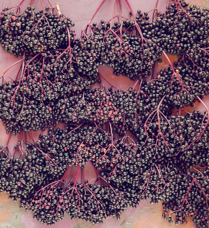 Bayas del saúco maduras frescas en la placa de madera rústica, flatlay fotos de archivo