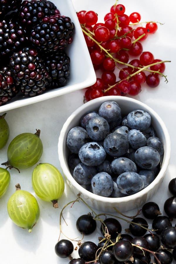 Bayas del verano - arándanos, redcurrants, zarzamoras, grosellas negras y grosellas espinosas en luz del sol imagen de archivo