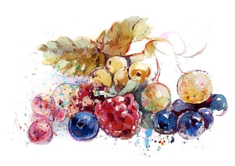 Bayas en la tabla (fresas, frambuesas, arándanos, pasas) foto de archivo libre de regalías