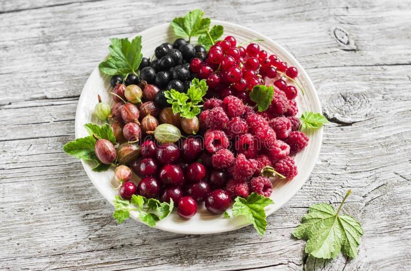 Bayas - frambuesas, grosellas espinosas, pasas rojas, cerezas, grosellas negras en una placa blanca foto de archivo libre de regalías