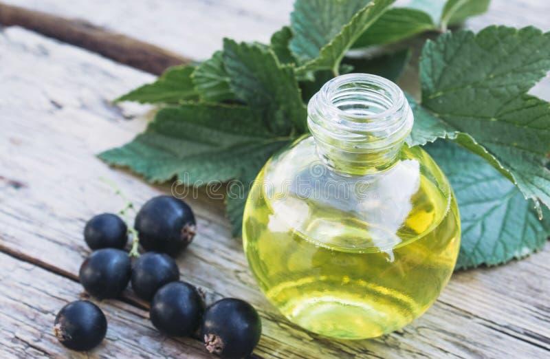 Bayas frescas de la grosella negra cerca de las botellas de cristal con el extracto Tinte medicinal con la grosella negra fotografía de archivo