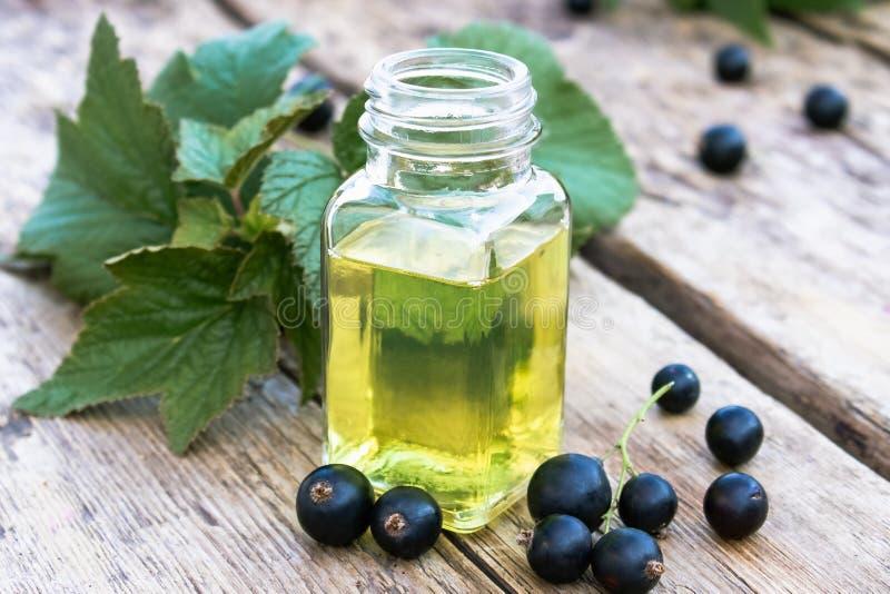 Bayas frescas de la grosella negra cerca de las botellas de cristal con el extracto Tinte medicinal con la grosella negra imagenes de archivo