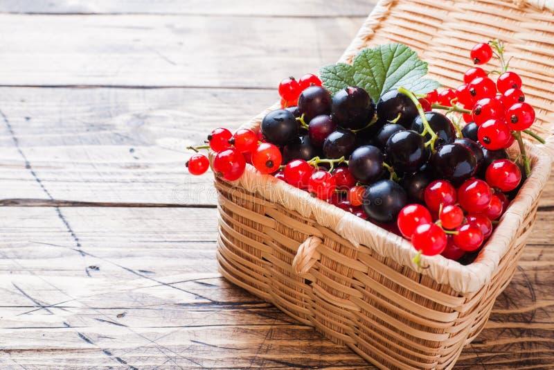 Bayas frescas de la pasa negra y roja en cesta en fondo de madera con el espacio de la copia imágenes de archivo libres de regalías