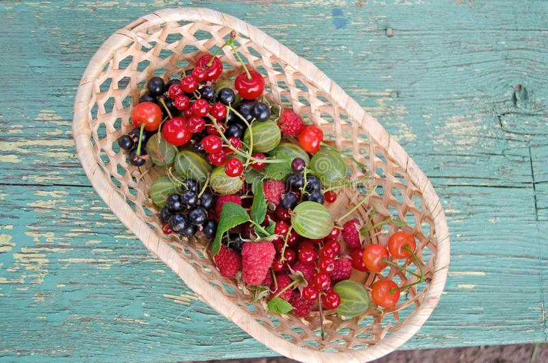 Bayas Los regalos del verano en una cesta foto de archivo