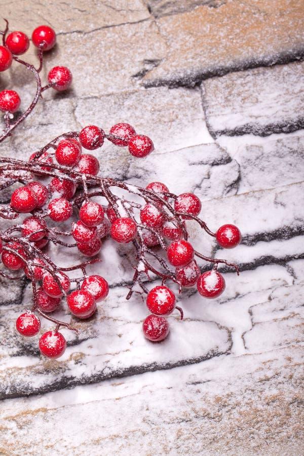Bayas rojas del invierno con nieve del polvo imagen de archivo libre de regalías