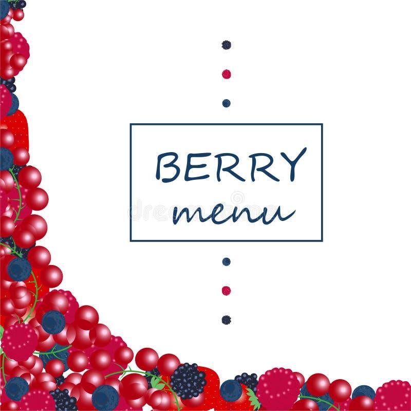 Bayas y frutas org?nicas frescas del verano Frambuesa de la zarzamora de la grosella espinosa del ar?ndano de la fresa stock de ilustración