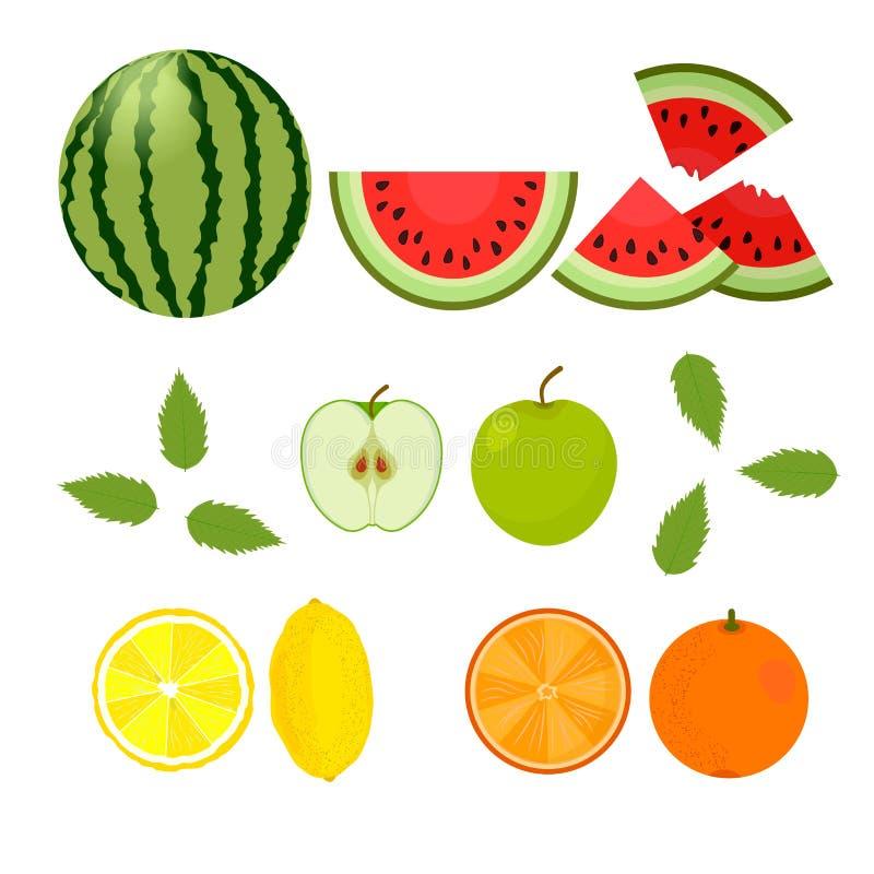 Bayas y frutas Sandía, naranja, limón, manzana en un fondo blanco Vector stock de ilustración