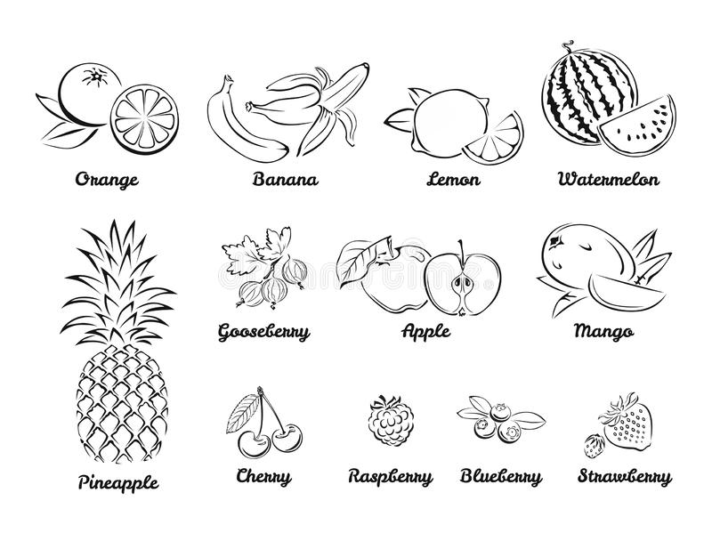 Bayas y frutas Sistema de iconos blancos y negros ilustración del vector