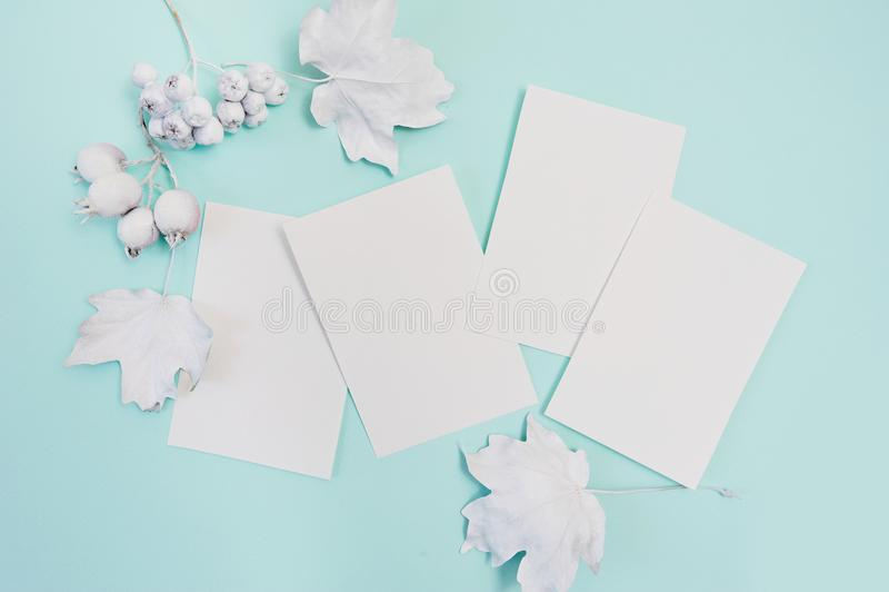 Bayas y hojas con la maqueta blanca del marco en un fondo en colores pastel del otoño de la turquesa con las hojas de papel blanc fotografía de archivo