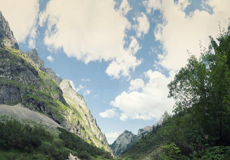 Bayerische Alpen, Deutschland lizenzfreies stockbild