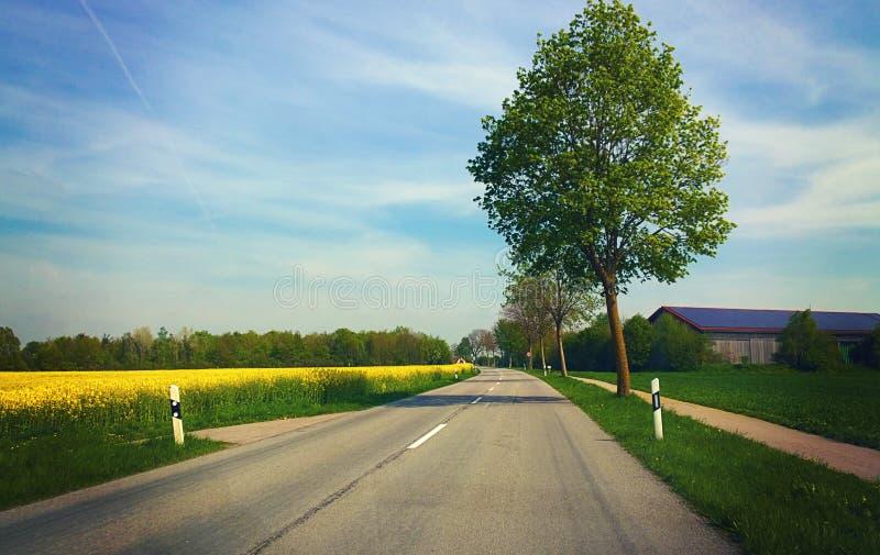 Bayern - vår, väg bland fält med ladugården, träd och skrän arkivfoton