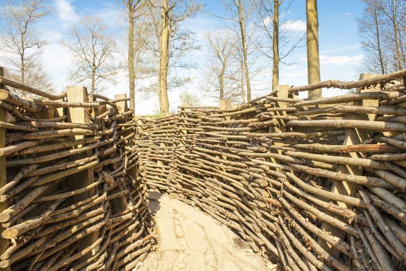 Bayernwald okopów wojna światowa jeden Flanders Belgia fotografia stock