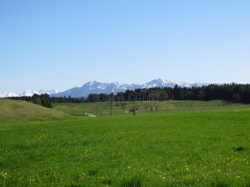 Bayerskt landskap och fjällängar som täckas i snö fotografering för bildbyråer
