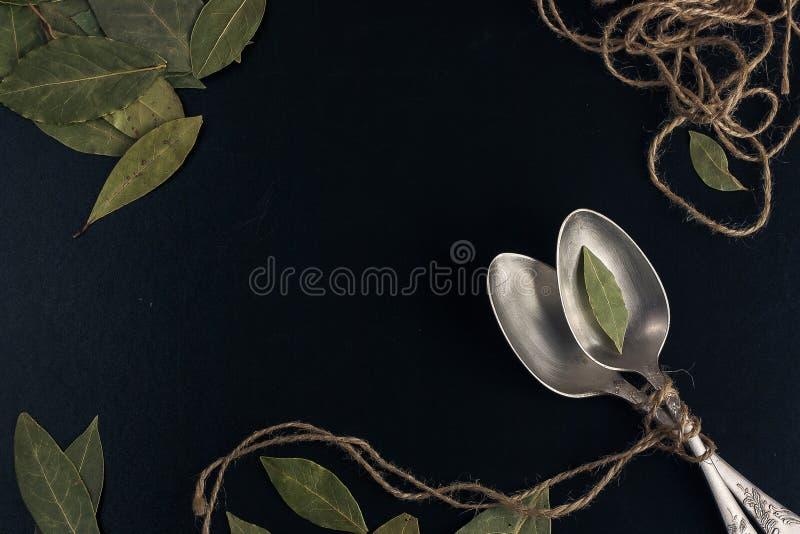 Bayleaf σε ένα ασημένιο κουτάλι στοκ φωτογραφία με δικαίωμα ελεύθερης χρήσης
