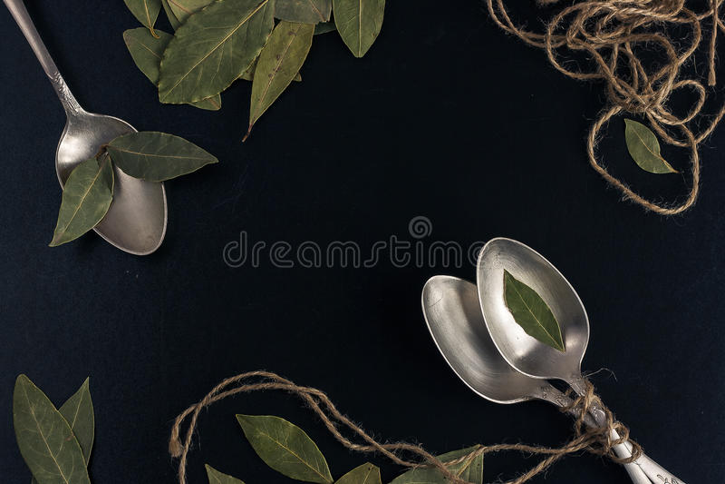 Bayleaf su un cucchiaio d'argento fotografia stock libera da diritti