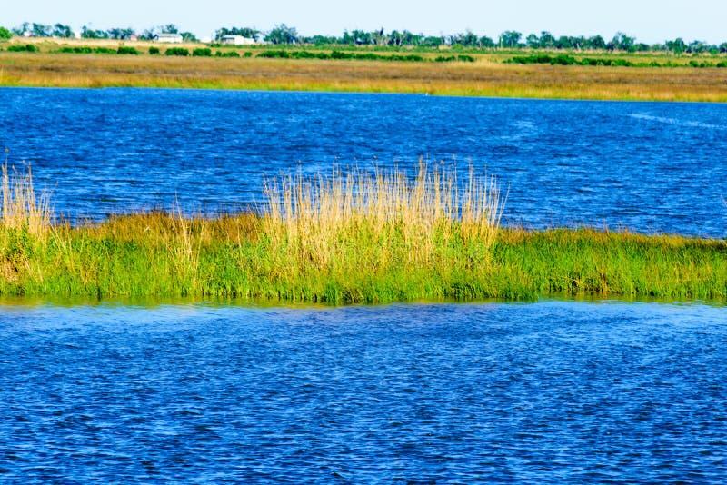 bayou Λουιζιάνα στοκ φωτογραφίες με δικαίωμα ελεύθερης χρήσης