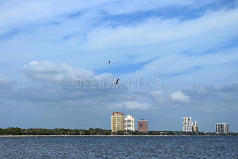 Bayside West Tampa. Bayside West neighborhood on the outskirts of Tampa City seen from Ballast Point Park royalty free stock photography