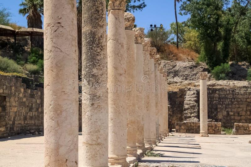 Bazaltowe kolumny uszeregowywali przy archeologicznymi ruinami Beit Jej « zdjęcie royalty free
