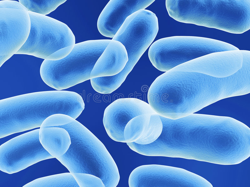 Bazillus Bakterium stock abbildung