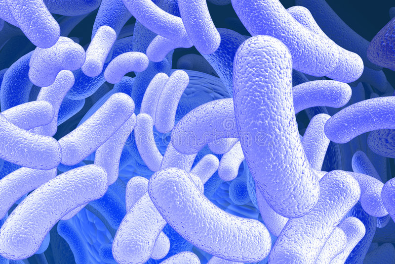Bazillus Mikroorganismen stock abbildung