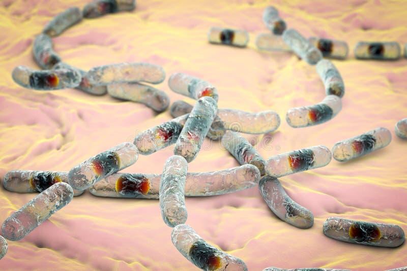 Bazillus Säulenkaktusbakterien stock abbildung