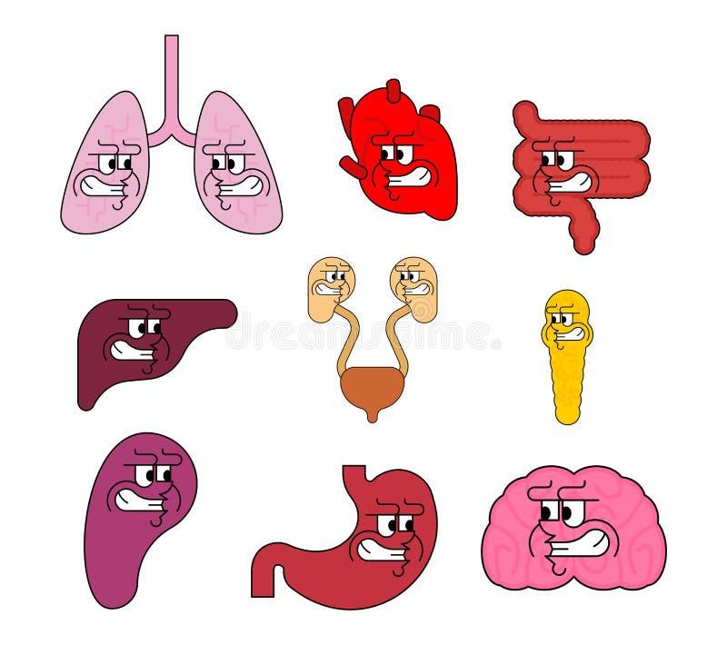 Bazo y p?ncreas intestinos y ejemplo del vector del cerebro libre illustration