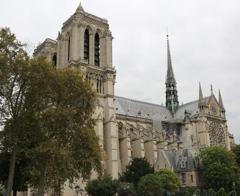 Bazylika Notre Damae w Paryż przed ogieniem zdjęcia royalty free