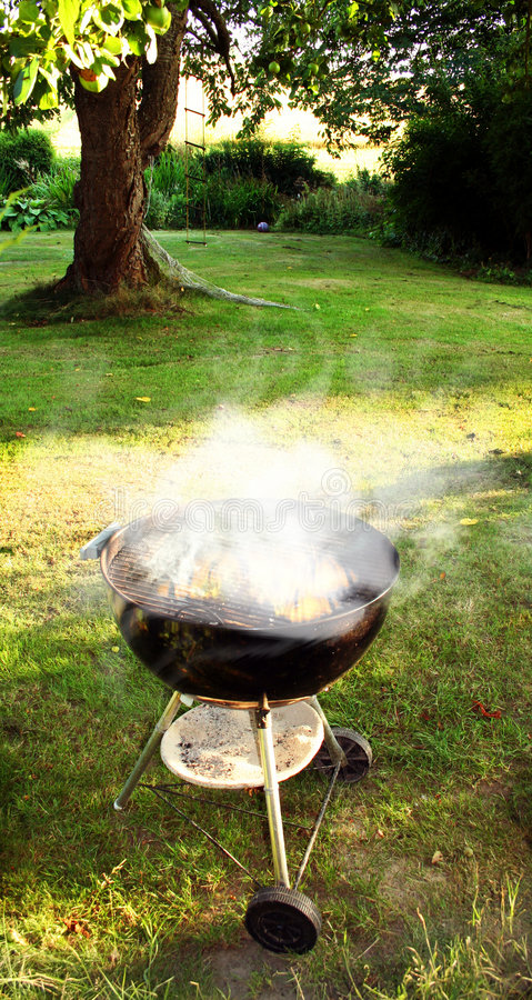 Download BBQ stock photo. Image of garden, lunch, smoke, leisure - 2355162