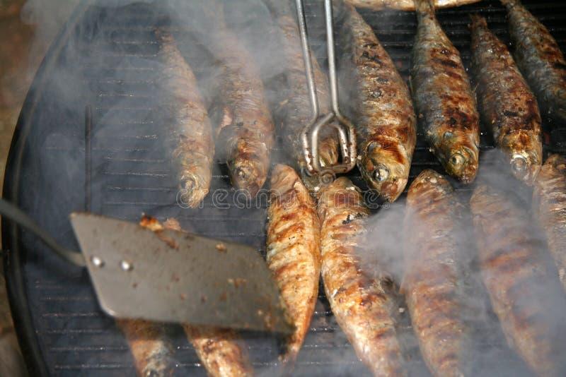 bbq-fisk arkivfoton