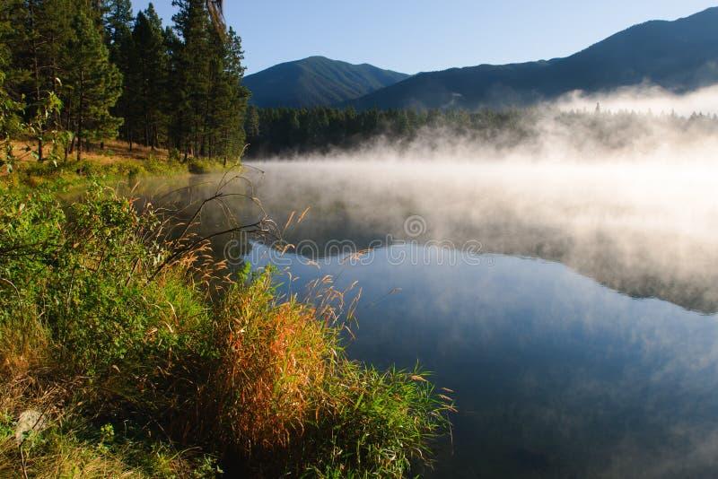 bc loon озера стоковое фото