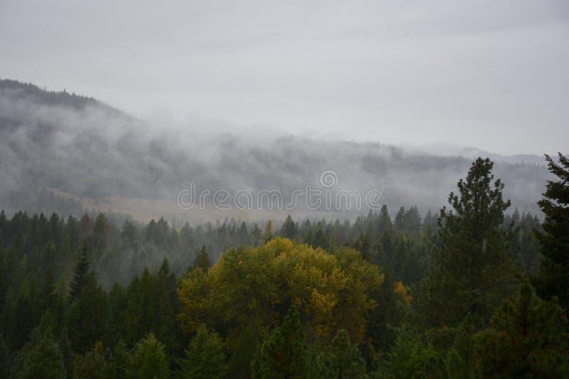 BC Mountians immagini stock