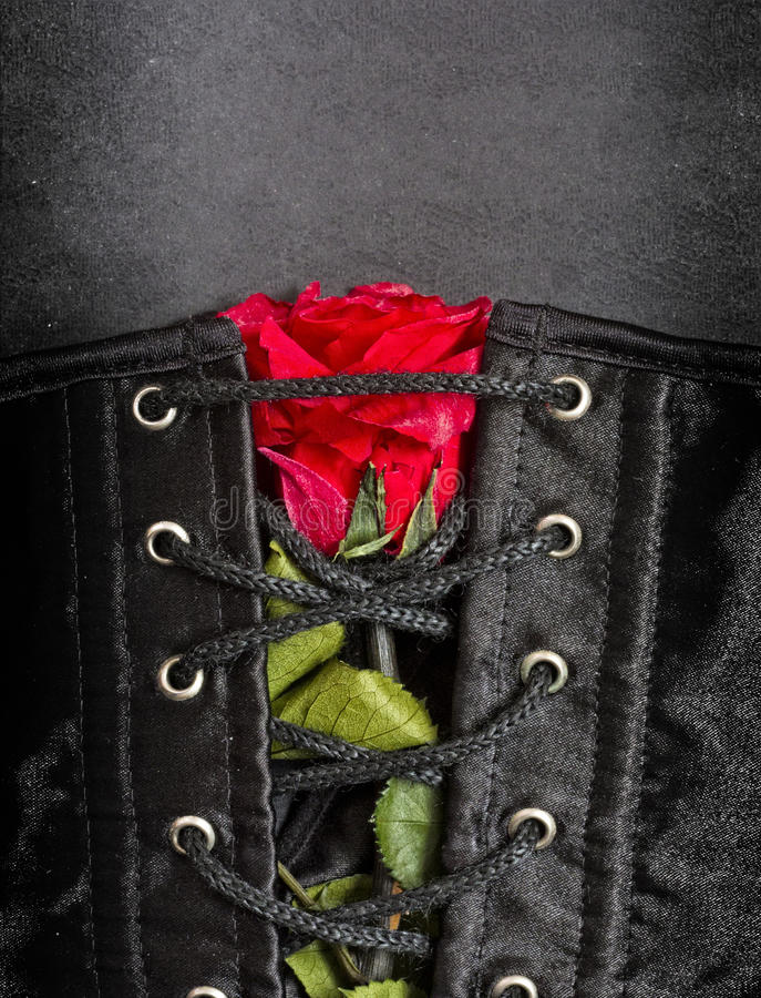 Bdsm gothic fetish corset with rose stock photos