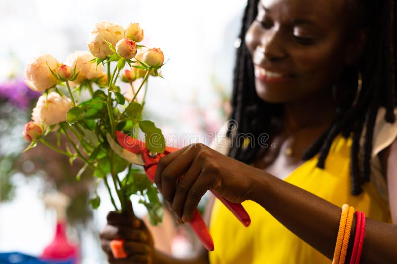 Focused photo on female hands that holding bouquet. Be careful. Delighted brunette expressing positivity while cutting bad leaves stock photo