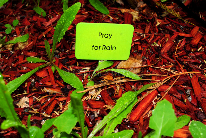 be regn arkivbilder