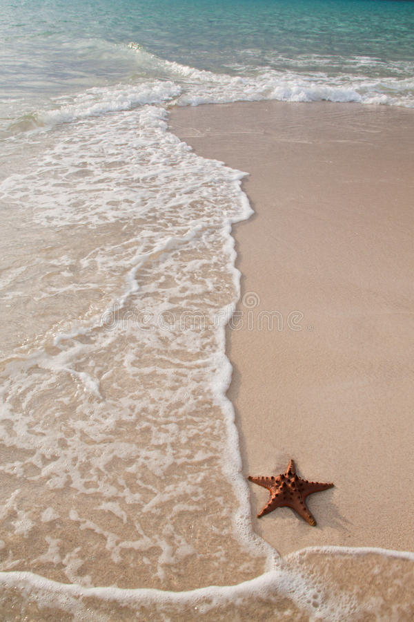 Download Beach Stock Image - Image: 19002581