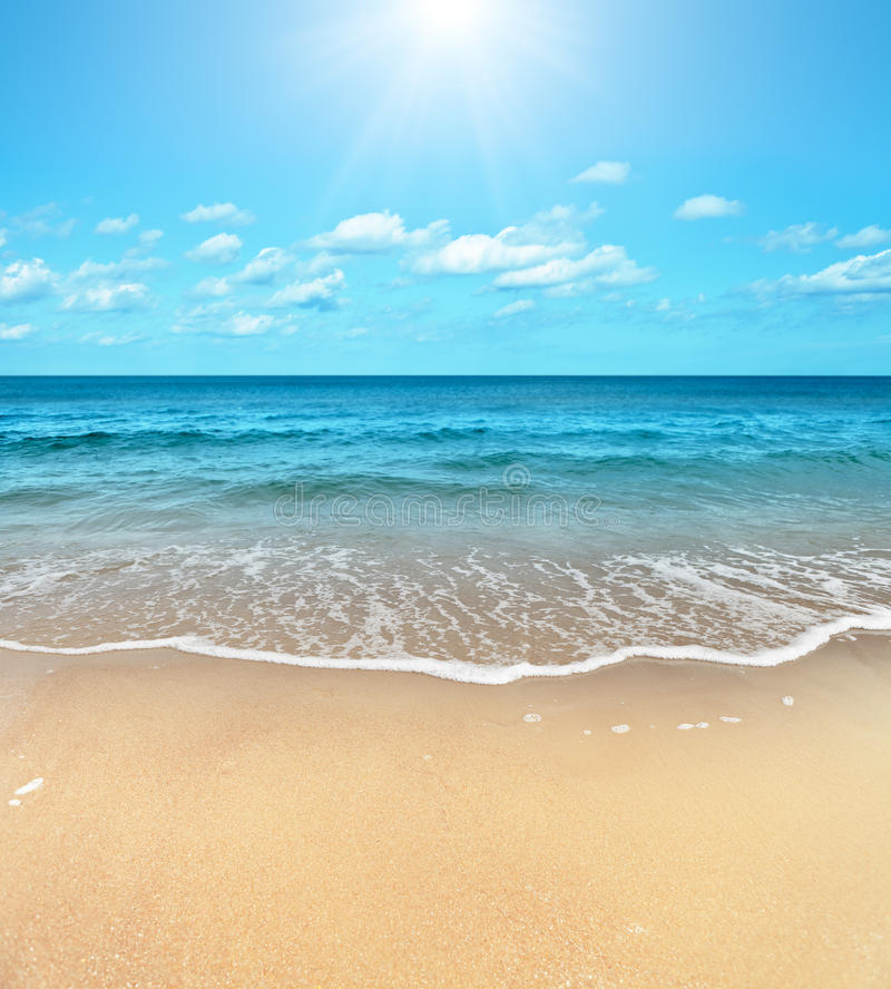 Free Beach Royalty Free Stock Photography - 21769427