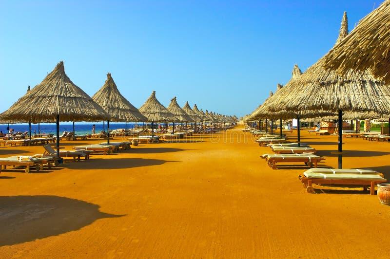 Beach. Lonely beach under blue sky stock image