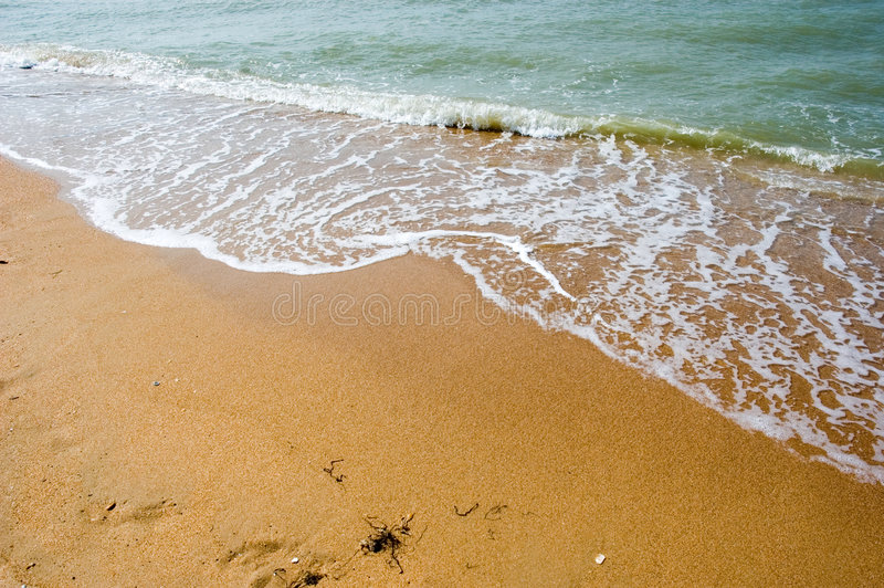 The beach royalty free stock photography