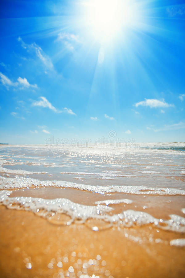 Free Beach Royalty Free Stock Images - 23799419