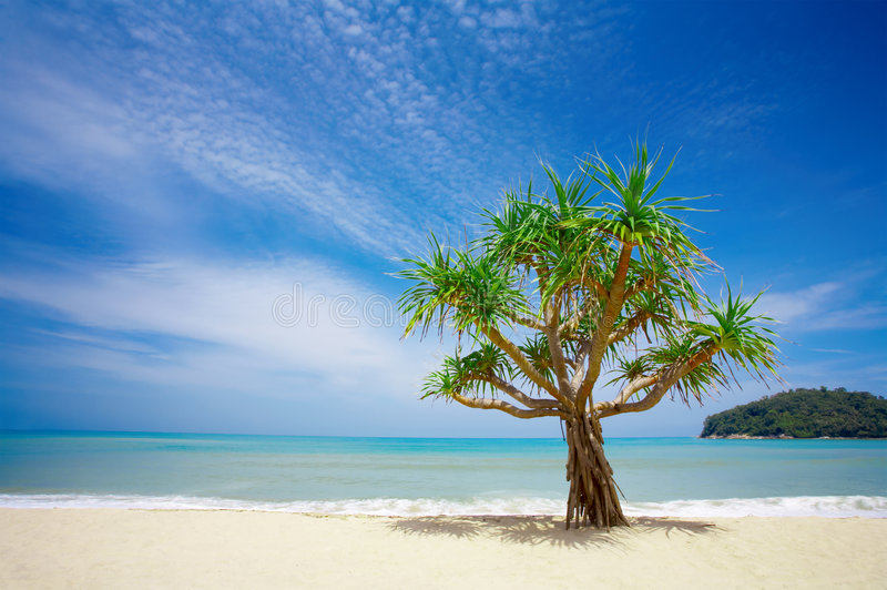 Download Beach stock image. Image of nature, ocean, beach, paradise - 2743195