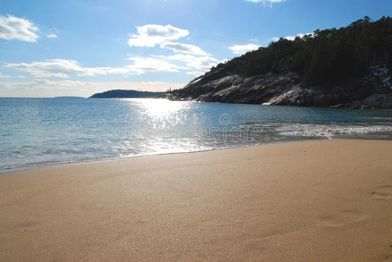Download Beach stock image. Image of acadia, rock, trees, empty - 4317861