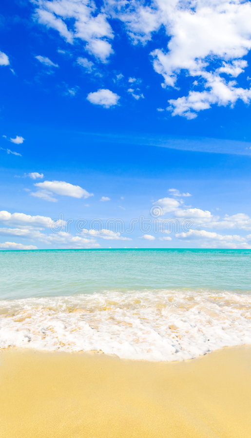 Download Beach stock image. Image of unspoilt, sand, tourism, beach - 6016239