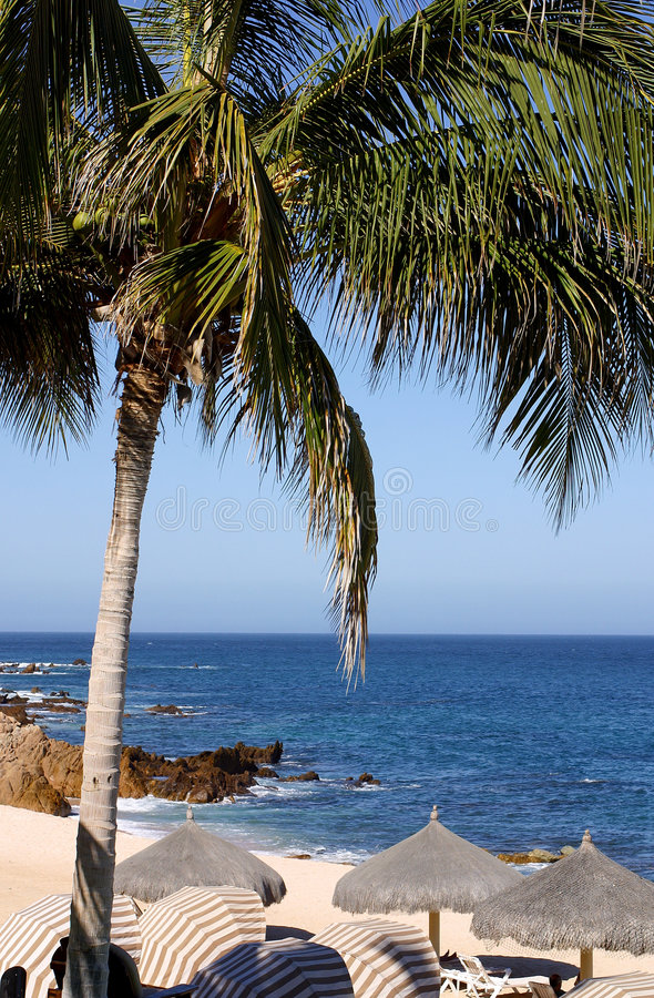 Free Beach Stock Photography - 654752